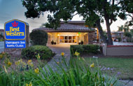 BEST WESTERN University Inn Santa Clara Near San Jose Airport